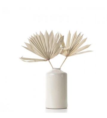 Liść palmowy