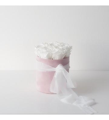Róże pure white