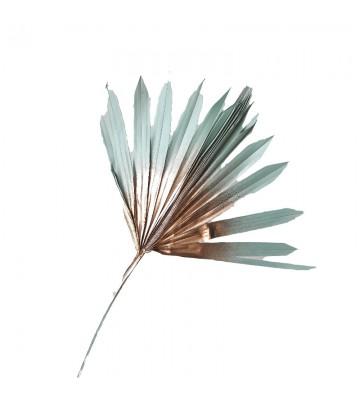 Palma błękitno złota