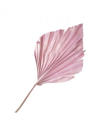 Strzałka różowa pozłacana